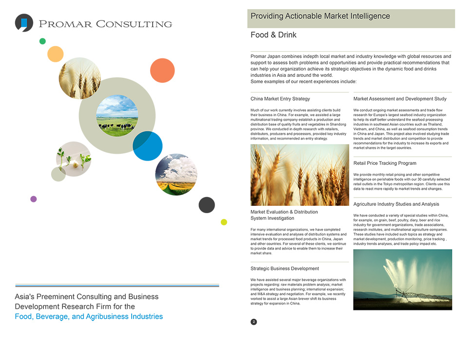 Promar Consulting - Company Brochure