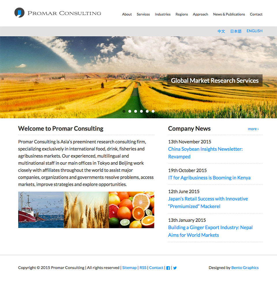 Promar Consulting - Homepage English