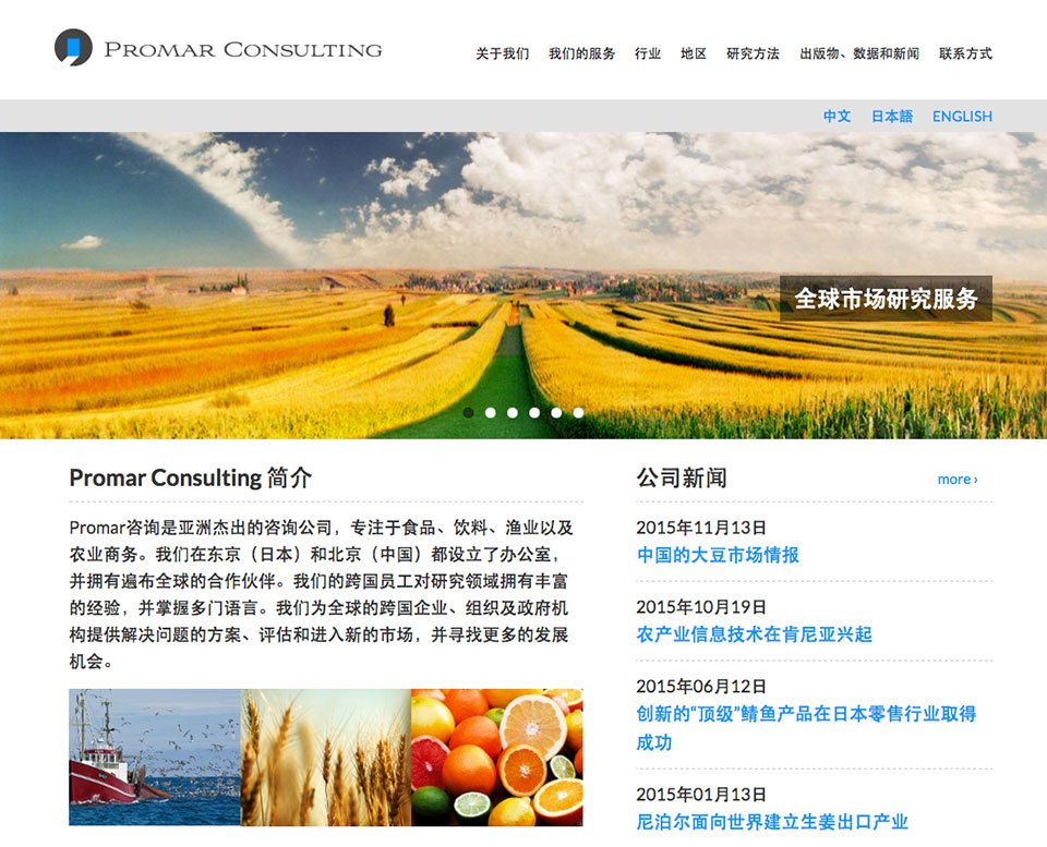 Promar Consulting - Homepage Japanese