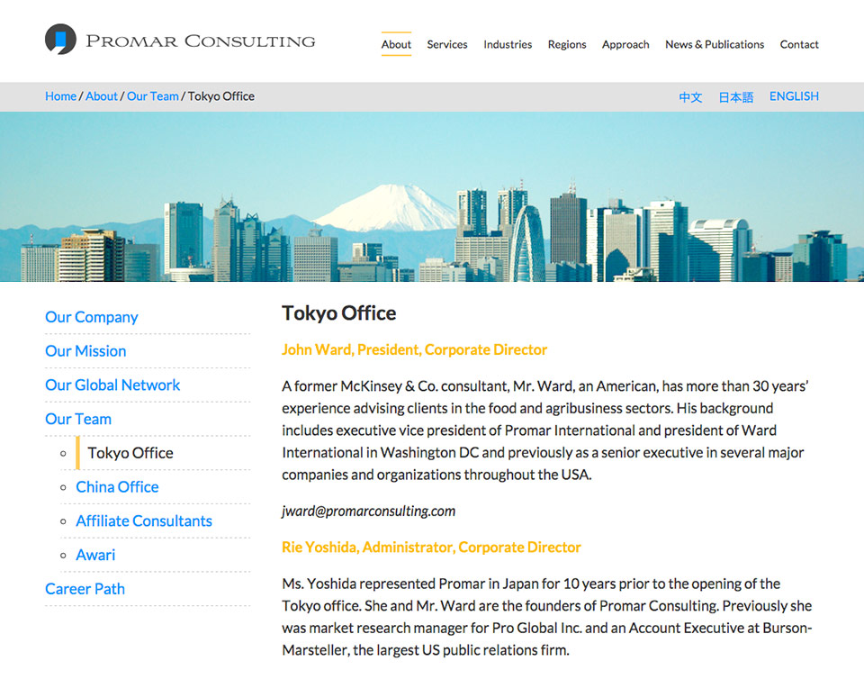 Promar Consulting - Website - About Page